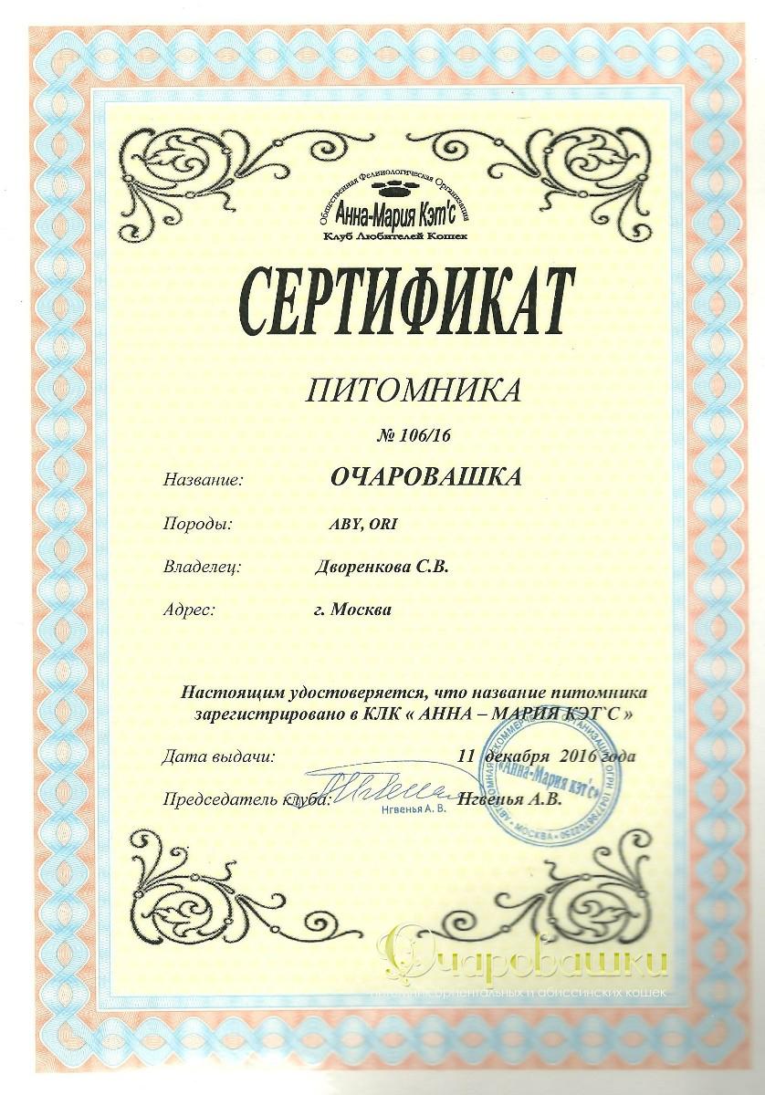 Сертификат питомника абиссинских и ориентальных кошек в Москве
